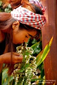 flower white smell