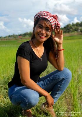 rice field close sit