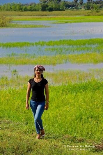 rice field portrait